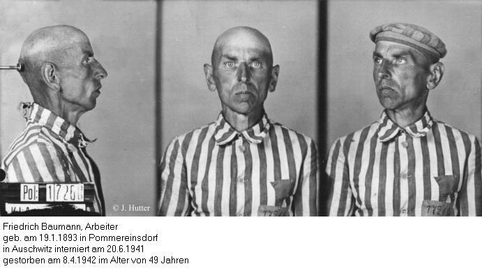 Pink Triangle Prisoner from Auschwitz Concentration Camp: Friedrich Baumann