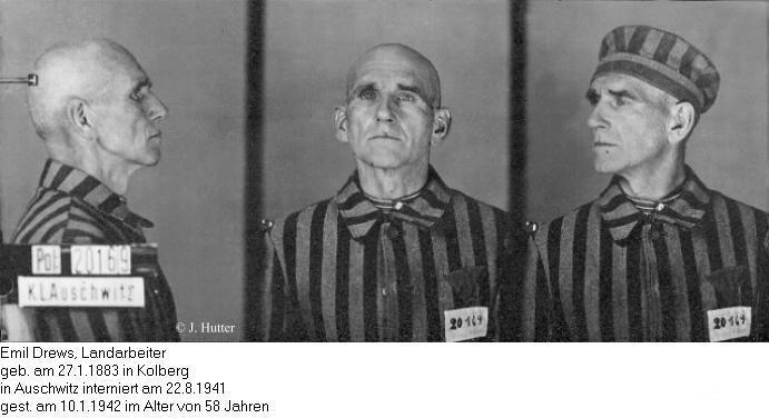 Pink Triangle Prisoner from Auschwitz Concentration Camp: Emil Drews