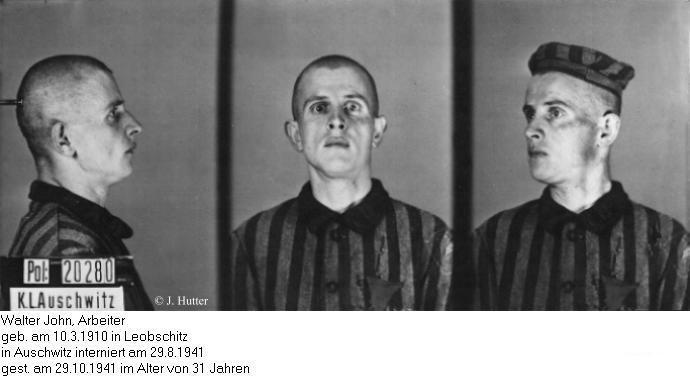 Pink Triangle Prisoner from Auschwitz Concentration Camp: Walter John