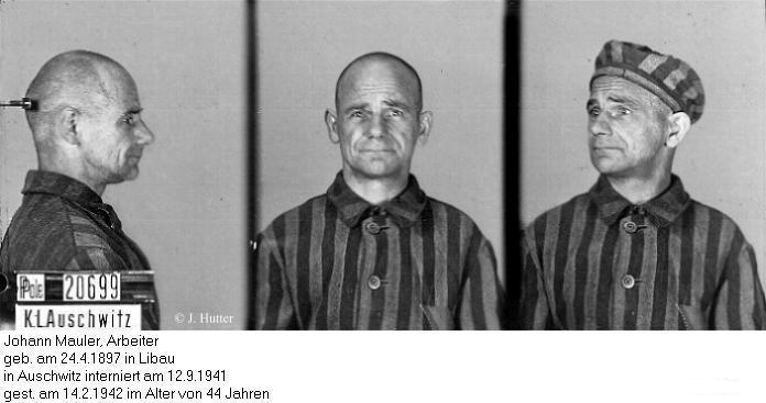 Pink Triangle Prisoner from Auschwitz Concentration Camp: Johann Mauler