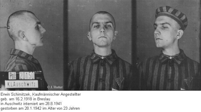 Pink Triangle Prisoner from Auschwitz Concentration Camp: Erwin Schimitzek